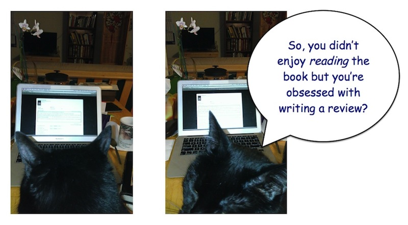 black cat book review critic