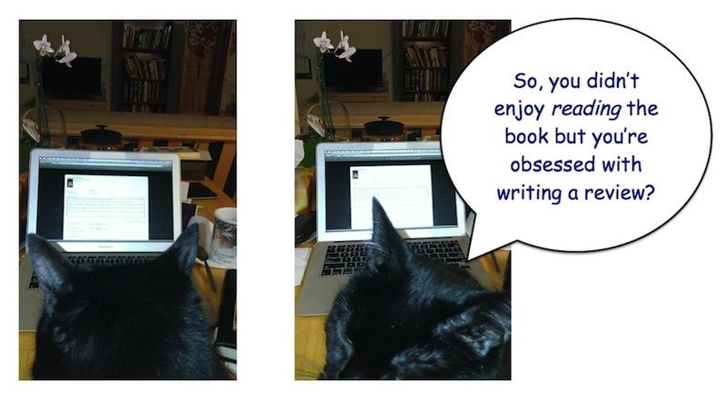 black cat book review critic