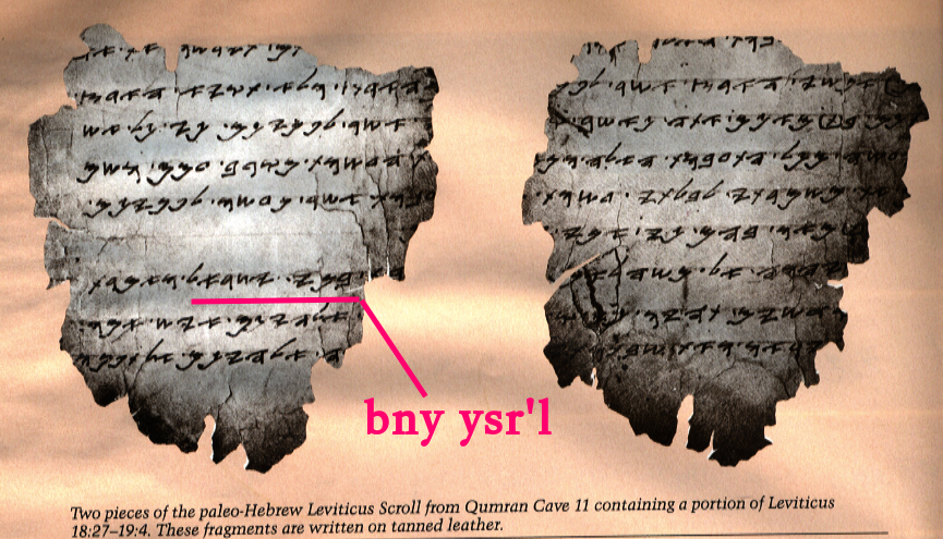Obtaining Hebrew Texts for Study