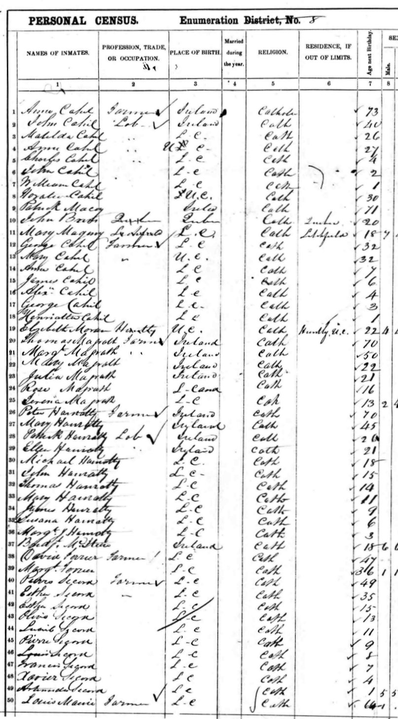 Calumet Island Census 1861