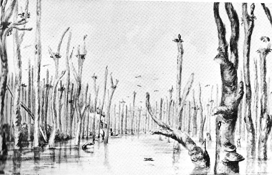 Dow's Great Swamp in 1832