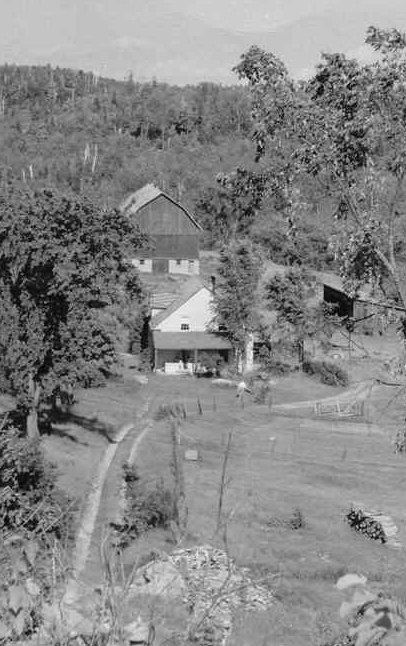 Ellard Farm