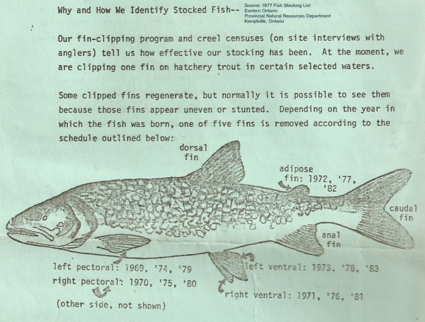 Fish Stocking List, 1977