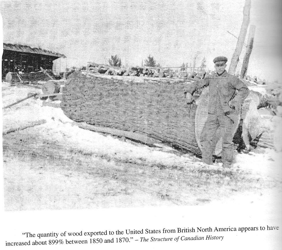 Giant Log from Kazabazua
