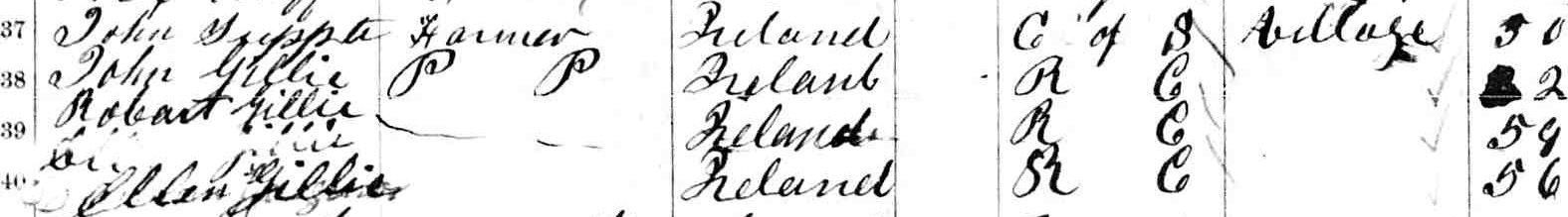 Robert Gillie, 1861 census, Pembroke, Ontario, Canada