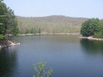 A Trout Lake