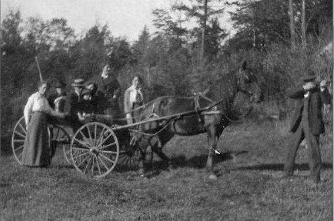 Partridge Hunting, McClements farm 1914