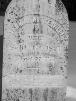 NUTTERVILLE Tombstone