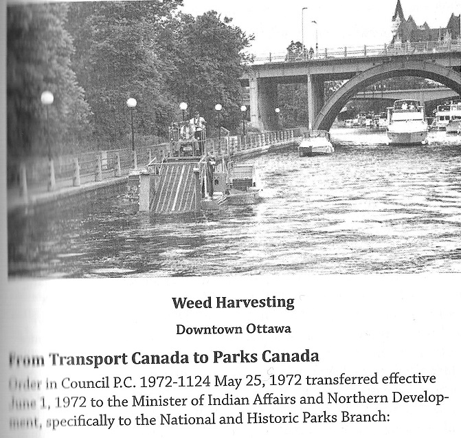 Weed Removal from the Rideau Canal in Downtown Ottawa