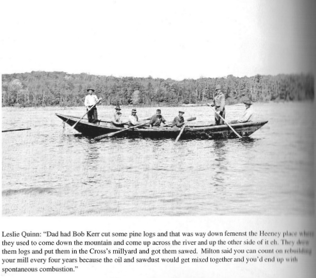 Pointer Boat Fernenst Kazabazua