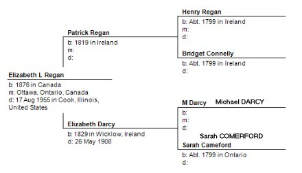 Henry Regan and Bridget Connelly, family tree