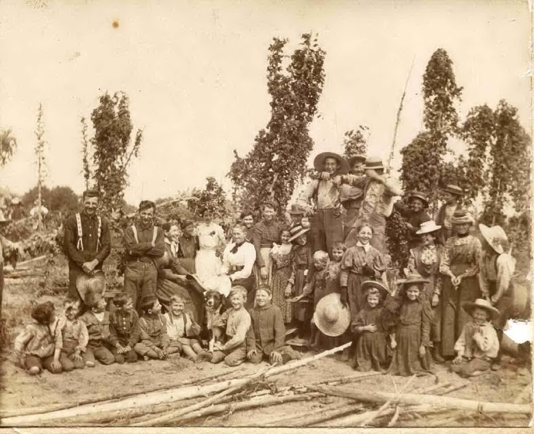 Riceville, Ontario, Canada, Hop Picking Bee in 1894