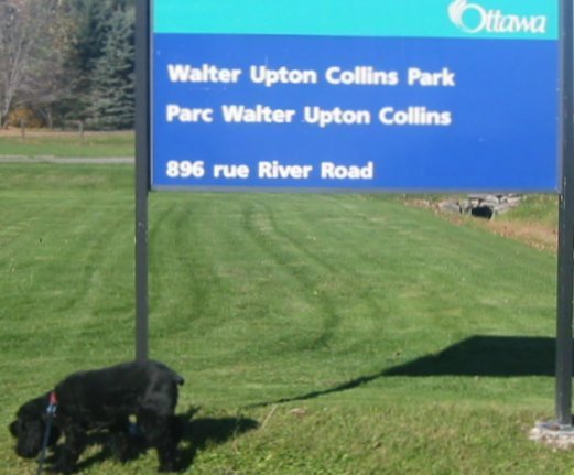 Walter Upton Collins Park